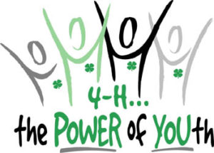 Cover photo for How to Join 4-H
